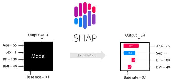 interpretowalnosc shap